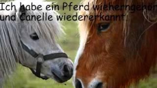 Pferdequälerei: Die Geschichte von Ange
