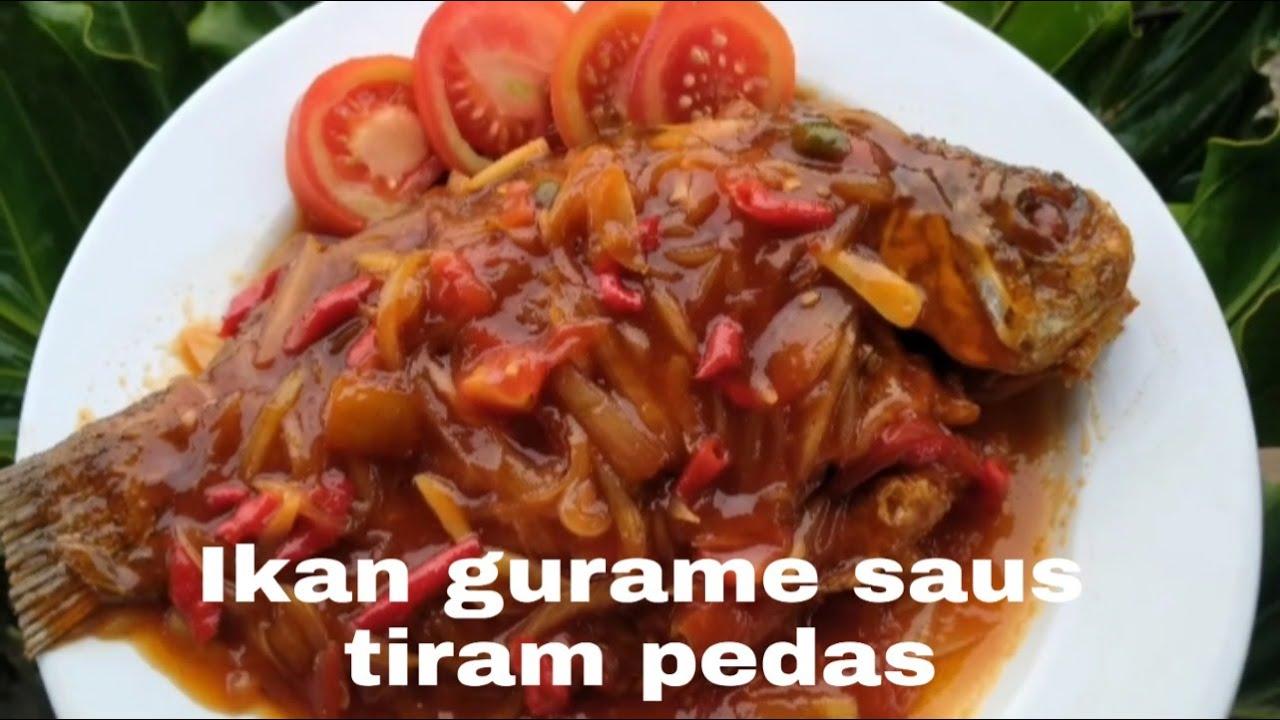 Ikan Gurame Saus Tiram Pedas Youtube