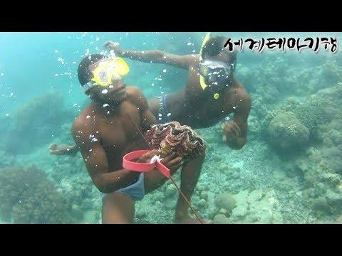 [세계테마기행] 원시의 생명, 파푸아뉴기니, 1~4부