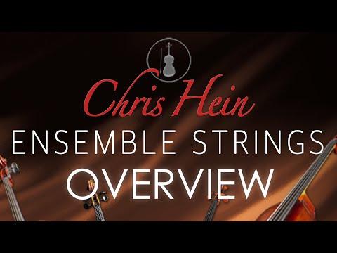 Best Service - Chris Hein Ensemble Strings - Overview