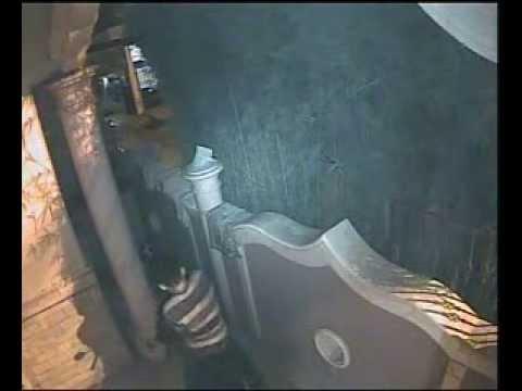 mencuri motor di teras rumah jalan kopi perumnas way halim 02