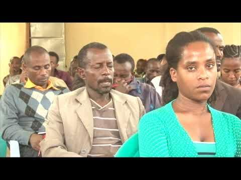 Ethiopian SNNPRs Benchmaji zone Mizanaman City transport - በደቡብ ክልል ቤንችማጂ ዞን ሚዛንአማን ከተማ ትራንሶርት