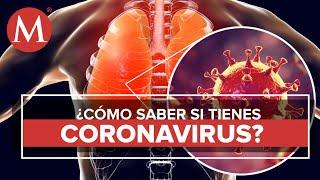Coronavirus en menos de 1 minuto