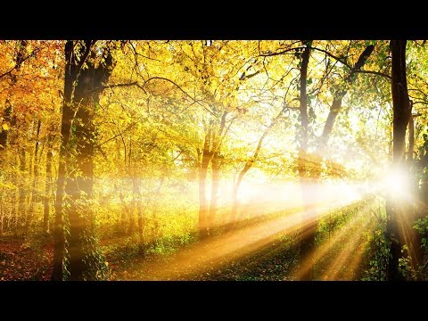 "Peaceful music, Relaxing music Uplifting Instrumental music ""Quiet Moments"" By Tim Janis"