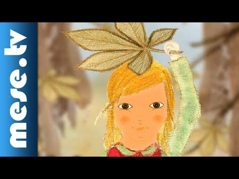 Gesztenyefalevél (animáció) | MESE TV thumbnail