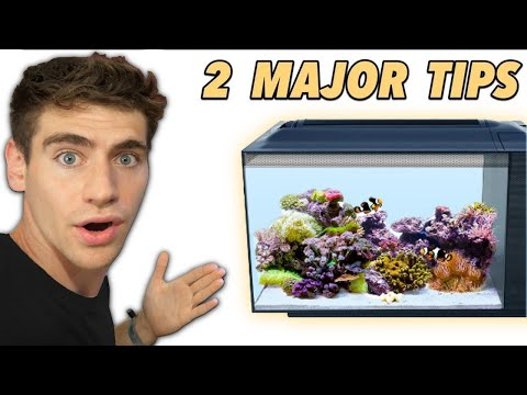 How To Set Up Your Reef Tank For SUCCESS!