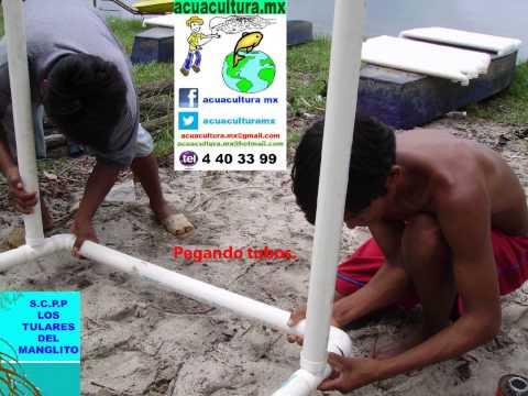 Preyecto peces en jaulas flotantes doovi for Construccion de jaulas flotantes para tilapia
