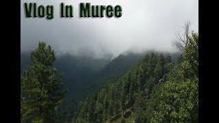 Vlog in Muree