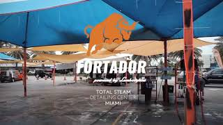 How to remove mold. Fortador Steam car wash and steamer sanitation instruction.
