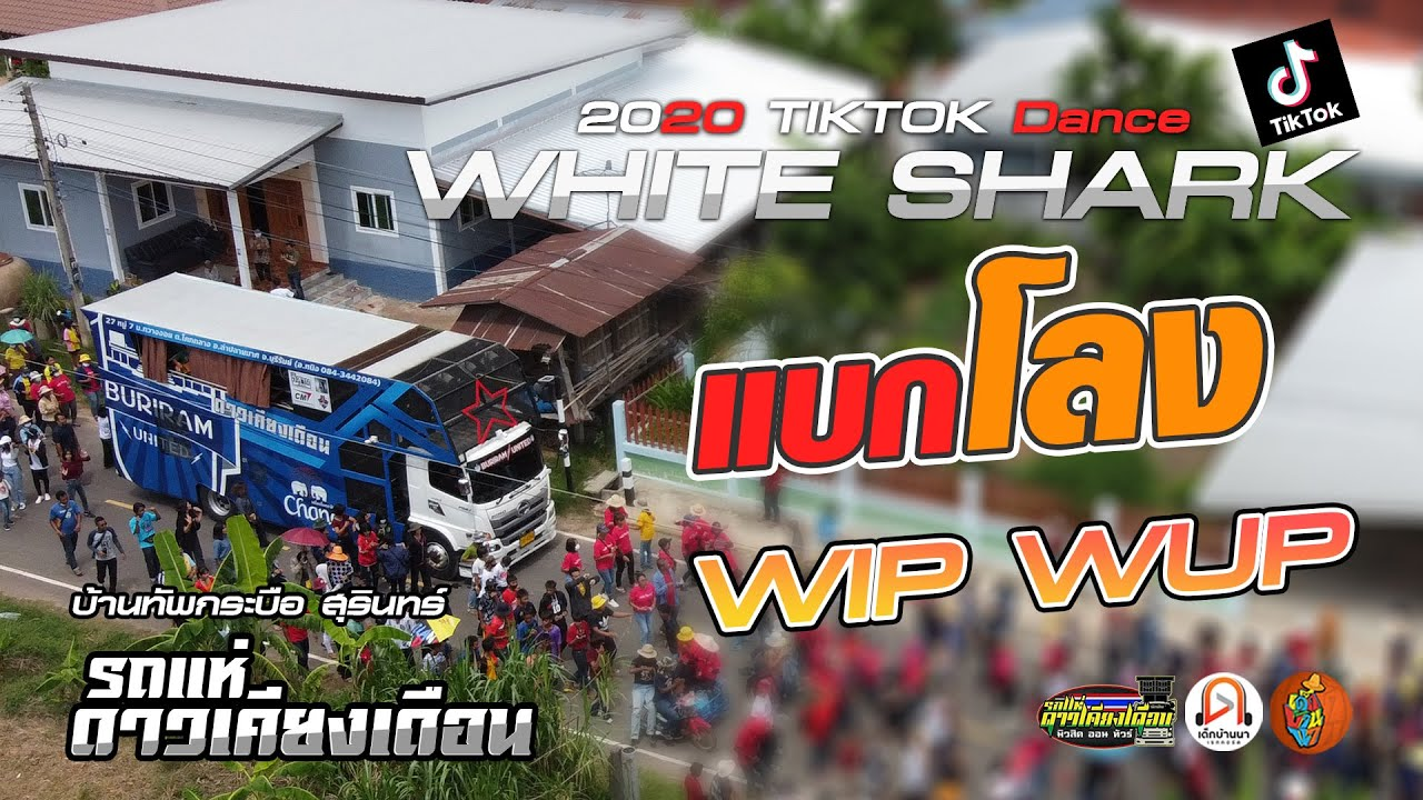 TIKTOK Dance!!  WHITE SHARK | แบกโลง | WipWup  [[ รถแห่ดาวเคียงเดือน]] บ้านทัพกระบือ สุรินทร์