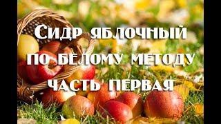Газированный домашний сидр из яблок: 1 часть рецепта (постановка сусла на брожение)