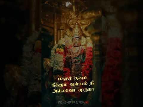 Alagendra Sollukku Muruga - God Murugar Full Screen Whatsapp Status Tamil Lyrics 2020 Raamdhanush