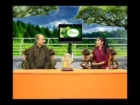 Dadi Maa Ke Gharelu Nuskhe aur Upay: Home Remedies in Hindi