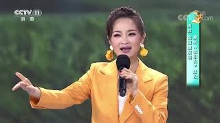 [梨园闯关我挂帅]豫剧《朝阳沟》选段 演唱:周炜 陈丽媛| CCTV戏曲