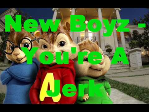 Chipmunks ft New Boyz  Youre A Jerk lyrics
