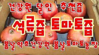 사천약초건강원 창업기념 석류생즙 해독쥬스 사과생즙 무료…