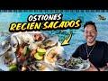 Video de Puerto Peñasco