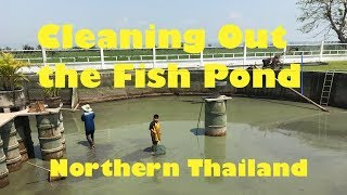 Cleaning Out the Fish Pond in Northern Thailand