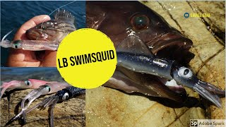 Download Video Grouper fishing and introducing the new LB Swim Squid by Savage Gear MP3 3GP MP4