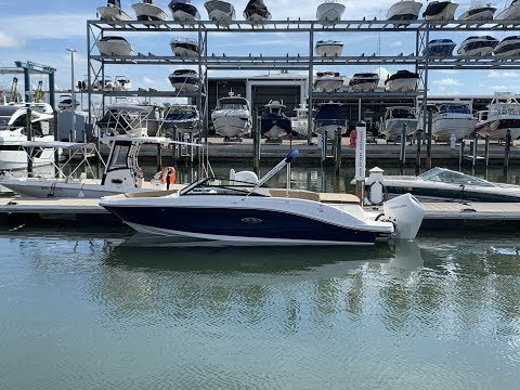 2020 Sea Ray SPX 230 Outboard For Sale at MarineMax Sarasota
