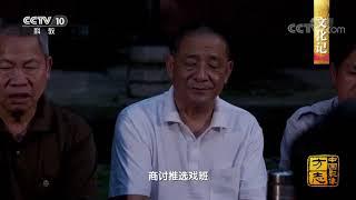 《中国影像方志》 第448集 湖南洞口篇  CCTV科教