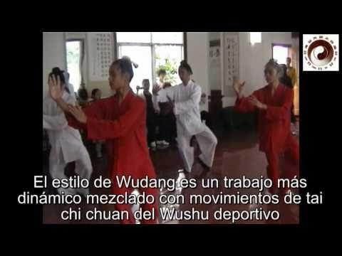 Wudang taiji y Hun Yuan taiji, intercambio de prácticas