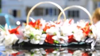 видео тест Nikon D90 18-105. Свадьба