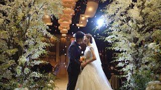대전 루이비스웨딩홀 그레이스홀 본식영상 결혼식dvd 하…