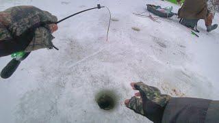 Вернулись на утренние лунки и не зря!!! Рыбалка 2020. Ловля белой рыбы зимой.