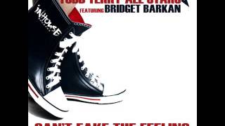 Todd Terry All Stars Feat. Bridget Barkan - Can