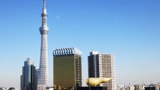 VLOG: 8 days in Tokyo!