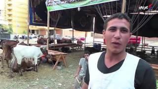 غلاء أسعار الأضاحي يحبط المصريين (فيديو)