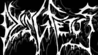Dying Fetus - Grotesque Impalement (Lyrics)