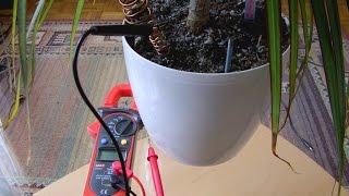 Darmowa energia z ziemi kwiatowej, darmowe napięcie 0,94V, Free voltage  from ground and plant