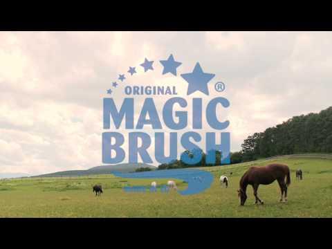 MagicBrush - Horse Grooming - Pferdepflege