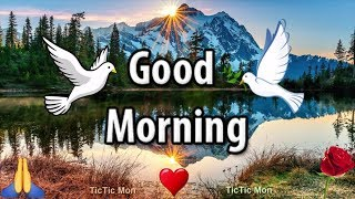 Good Morning WhatsApp Status Video ♥️ TicTic Mon