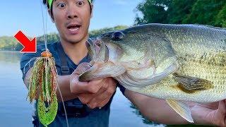 MAGIC LURE CATCHES BIG BASS!!! (Summer Jon Boat Fishing)