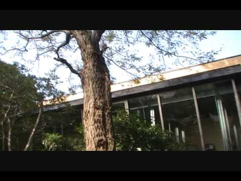 Two Galleries- Yoshizawa Garden Gallery & Kiuchi Gallery 「二つのギャラリー」