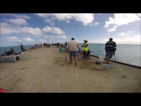 Salmon Hotspots Perth