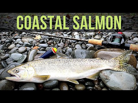 Olympic Peninsula Salmon Fishing | BOBBER DOWN!! | 4K