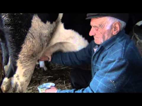 Manuel Salgueirão agricultor conversa na Murtosa com Jorge Bacelar