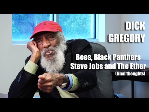 Dick Gregory - On Bees and Black Panthers