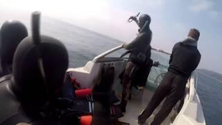 Подводная охота Желтый Окунь Находка