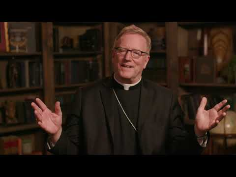 Bishop Barron on His Fifth Episcopal Anniversary