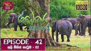 Sobadhara - Sri Lanka Wildlife Documentary | 2020-01-17 | Elephant-Human Conflict (අලි මිනිස් ගැටුම) Thumbnail