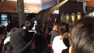 ズーラシアの恐竜ショー 緒方剛志 検索動画 19