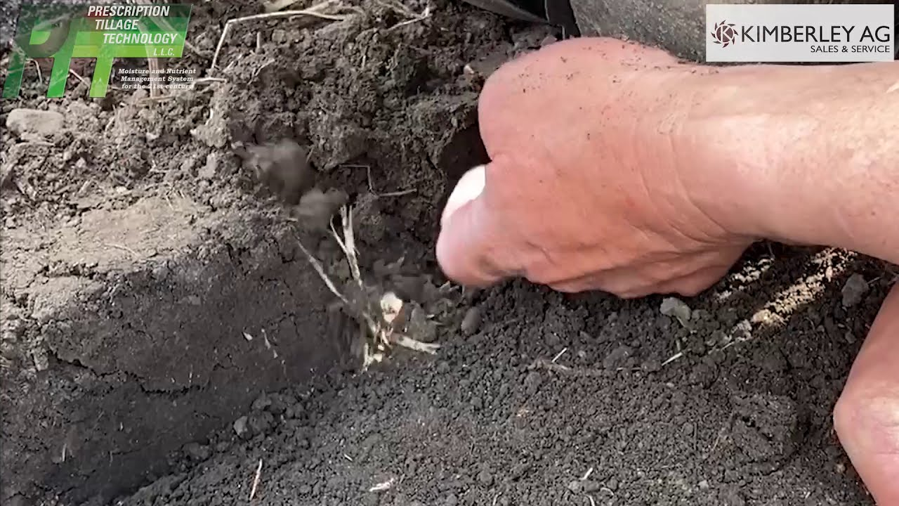 Digging behind the STP Blade showing fractured sidewalls in the furrow Feat. Kimberley Ag