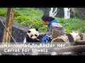 Nanny Had To Barter Her Carrot For Towels | iPanda