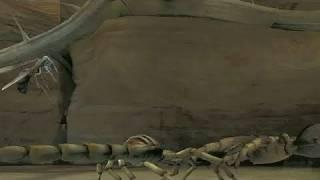 Deadly Creatures Nintendo Wii Video - Billy Bob Thornton