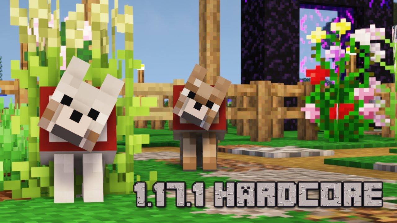 S05E07: 1.17.1 HARDCORE FAFFERY - Day SEVEN